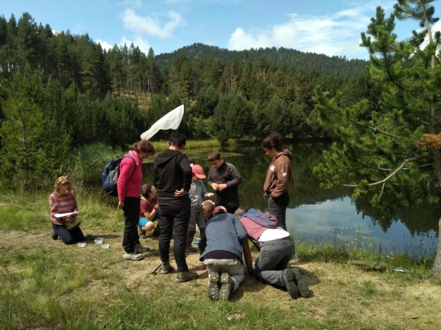 Le groupe découvrant les richesses des abords du lac de Caudies © PNRPC